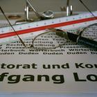 Lektorat Lorenz